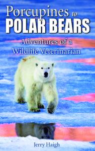 pocupines-to-polar-bears